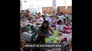 PH has most dengue cases in Southeast Asia in 2019