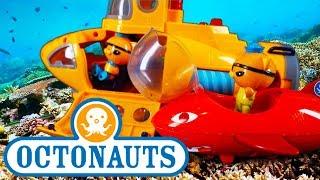 Octonauts Adventure Special - Episode 3 - Full English - Cbeebies