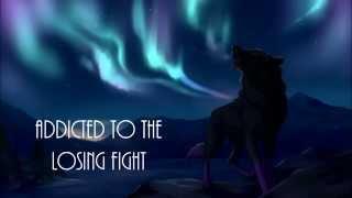 Jaymes Young - Northern Lights (Lyrics)