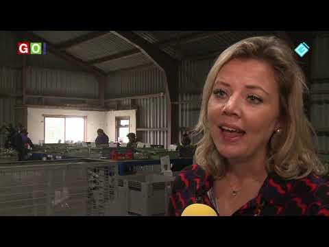 Afgedankte elektrische apparaten krijgen een tweede leven - RTV GO! Omroep Gemeente Oldambt