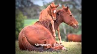 10 Dana Doss Schuetze   Memories