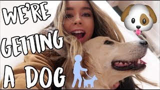 Download Youtube: WE'RE GETTING A DOG ALEX! VLOGMAS DAY 9!