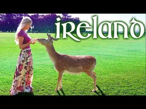 Ireland Travel Guide Vlog Vacation Trip Things to do in Dublin What Places Visit See Tour Tips Diary