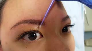 Soft Oriental Eyebrows Permanent Makeup by El Truchan @ Perfect Definition