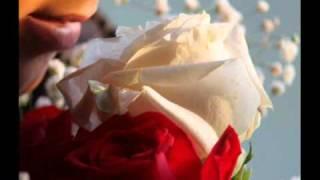 Joe South - Rose Garden