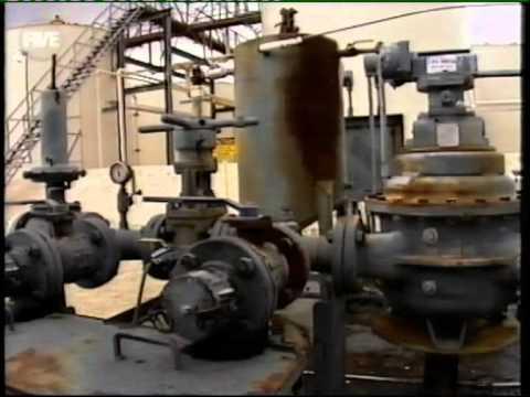 Das Öl manol das Molybdän 10w 40 Benzin die Rezensionen