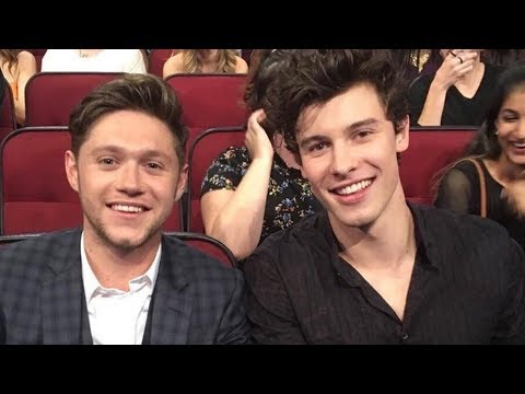 "Shawn Mendes Covers BFF Niall Horan's Song ""Nice to Meet Ya"""