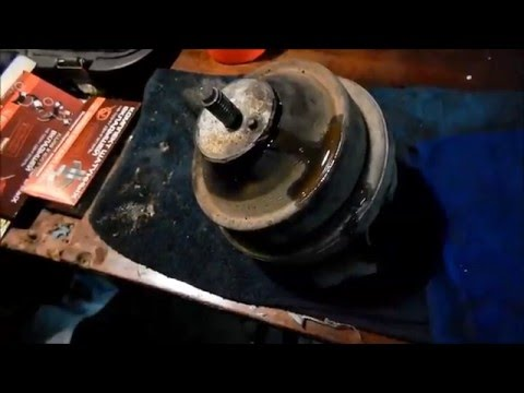 Мандаринка утка талисман