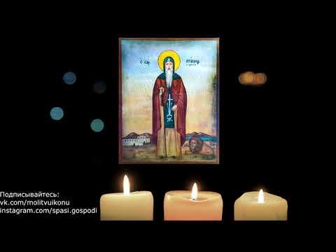 Молитва Герасиму Иорданскому за животных