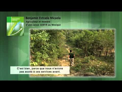 Vidéo Youtube - DID, leader mondial dans le domaine de la microfinance (2011)