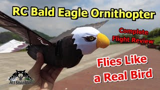 GoGo Bird RC Bald Eagle Flapping wing Ornithopter Flight Review
