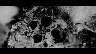 Hania Rani   Eden (Official Video) [Gondwana Records]