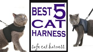Best 5 Cat harness And Leash For Walking Escape Proof 2019 || Best 5 Cat Harnesses.