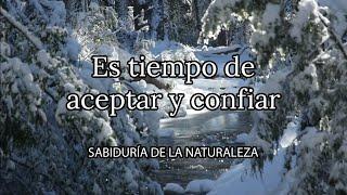 Aceptar y confiar, la propuesta del invierno