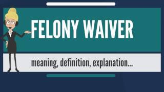 What is FELONY WAIVER? What does FELONY WAIVER mean? FELONY WAIVER meaning & explanation