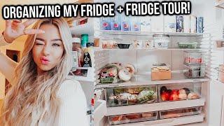 organizing my fridge + fridge tour! getting drunk with adelaine!