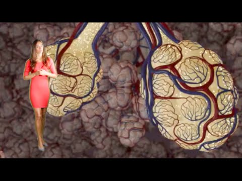 Video Emphysema & Bronchitis: COPD