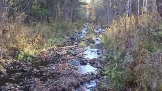 Осенний одиночный поход по избам, тайга, балаганы. Таежные реки, Карадат 30км. пути