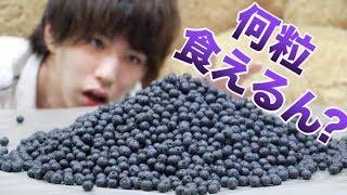 【限界】ぼくってブルーベリーって何粒食えるの?
