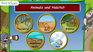 Adaptations In Animals | Habitats | Terrestrial Aquatic | Class 4