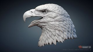 American Bald Eagle head sculpture 3d model