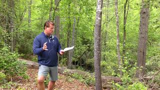 Lake Keowee Real Estate Video Update May 2020 Mike Matt Roach