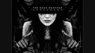 The Dead Weather New pony