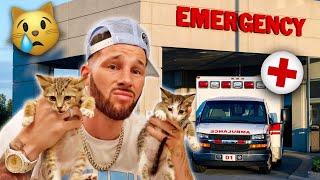 EMERGENCY HOSPITAL VISIT FOR OUR BABY KITTENS 💔   FamousTubeFamily
