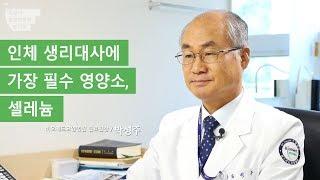 [암 환자에게 중요한 미량 영양소 1] 인체 생리대사에 꼭 필요한 셀레늄
