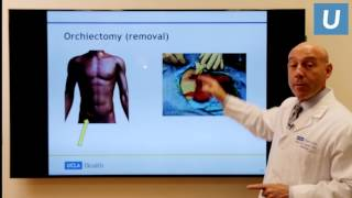 Testicular Cancer: What You Really Need to Know   Mark Litwin, MD, MPH   UCLAMDChat