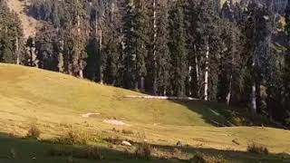preview picture of video 'Skyland Wari Dir Upper Kpk. A Hidden Paradise❤'