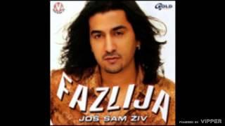 Fazlija   Ti Si Me Digla Iz Pepela   (Audio 2003)