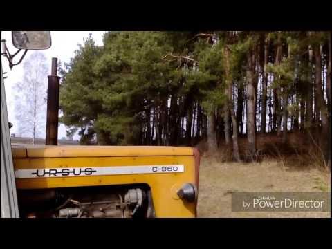 Bob Arnot chronić stawy