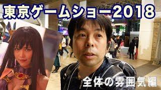 TOKYOGAMESHO東京ゲームショー2018会場の雰囲気を撮影してきました!「ビジネスデー」