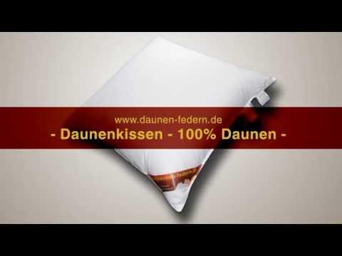 Daunenkissen 100% Daunen - das Traum Daunenkissen von daunen-federn.de