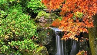 """Peaceful Music, Relaxing Music, Instrumental Music """"Autumn in New England"""" By Tim Janis"""