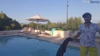 Video Roman und Freunde