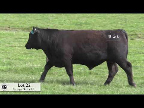 PARINGA DUSTY R51