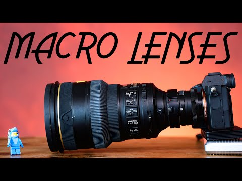 Guide to Macro Lenses