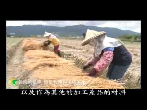 勿焚燒稻草(國語版)