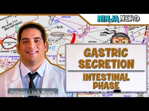 Mitralklappenprolapssyndroms und Hypertension