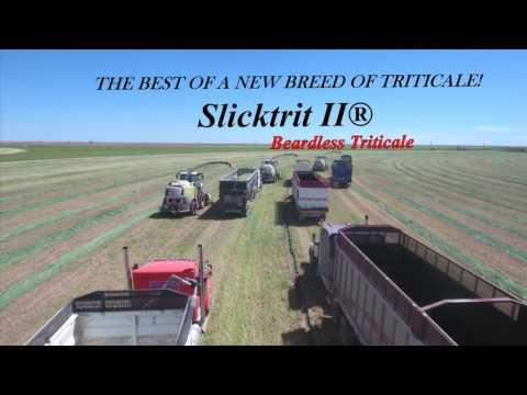 Waltey Seed Slicktrit II