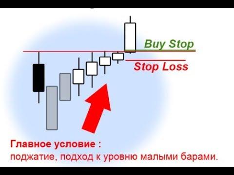 Живой график покупки бинарных опционов