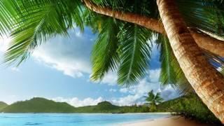 Kygo - Island (Tropical House)