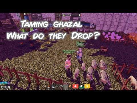 Tree Of Life Game 30- Taming And Feeding Ghazal Or Gazelle