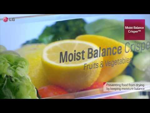 Moist Balance Crisper