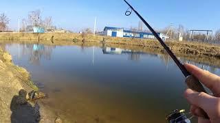 Рыбалка в белоозерске воскресенского района