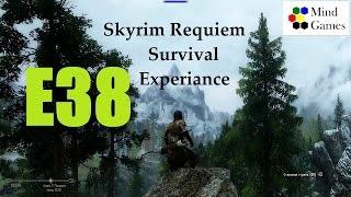 Skyrim Requiem Survival Experiance. Эпизод 38: Вылечиться и сбросить хвост!