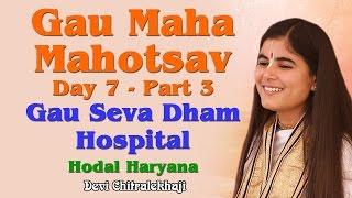 Gau Maha Mahotsav Day 7 - Part 3 Gau Seva Dham Hospital Hodal Haryana Devi Chitralekhaji