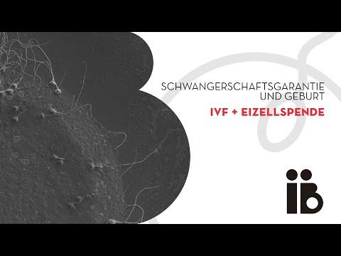 Schwangerschaftsgarantie und Geburt. IVF + Eizellspende